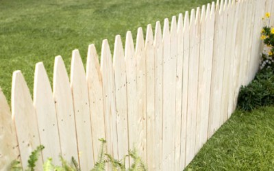 Tips For Maintaining Your Wood Fence Panels